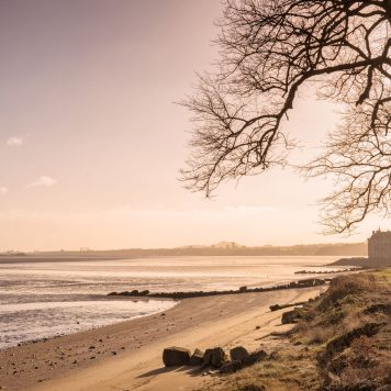 The estuarine coast